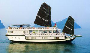 white-dolphin-cruise